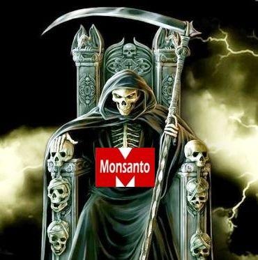 Morte-monsanto